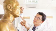 490777883 Doctor Pointing At Acupoints On Human Model