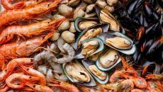 Shellfish Scaled