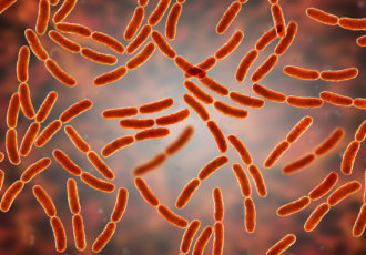 Getty Images bacteria