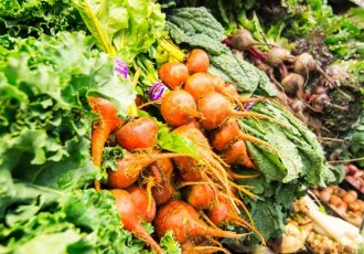 Thinkstockphotos 462359161 Vegetables