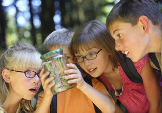 Thinkstockphotos 91704845 Children Looking At Bug In Jar