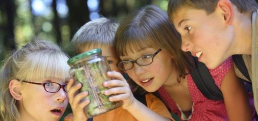 There's a Label for That: Summer Camp Checklist