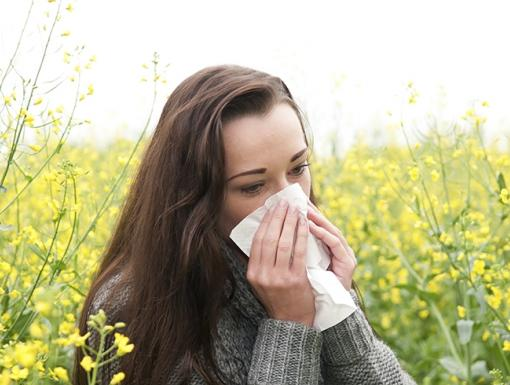 Minimizing Spring Allergy Symptoms