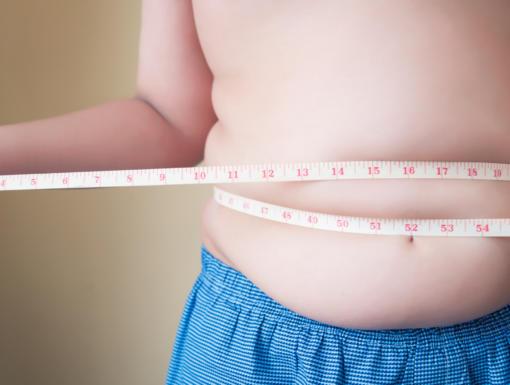 Non-Alcoholic Fatty Liver Disease in Children