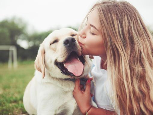 5 Benefits of Dog Ownership
