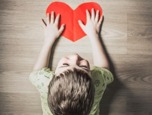 What is Single Ventricle Congenital Heart Disease?