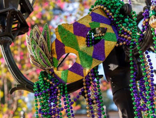 Mardi Gras Survival Guide