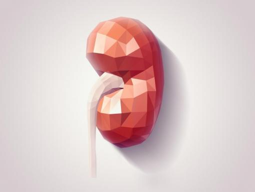 Five Facts on Chronic Kidney Disease