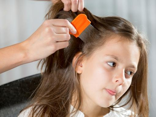 Tips and Tricks When Dealing With Head Lice