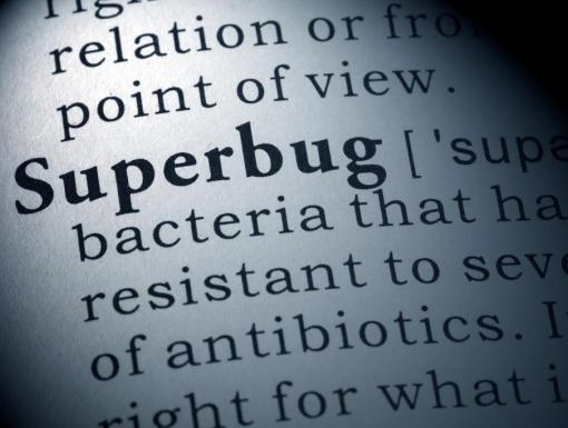 What are Superbugs?