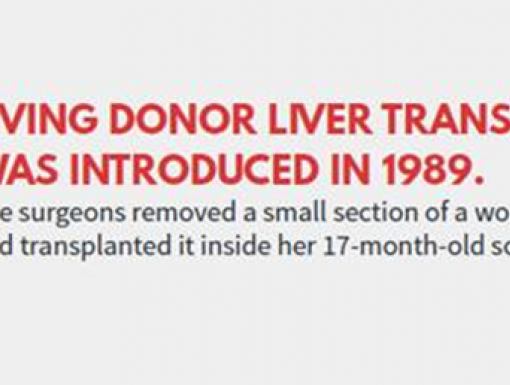 Liver Transplants: A Waiting List Snapshot