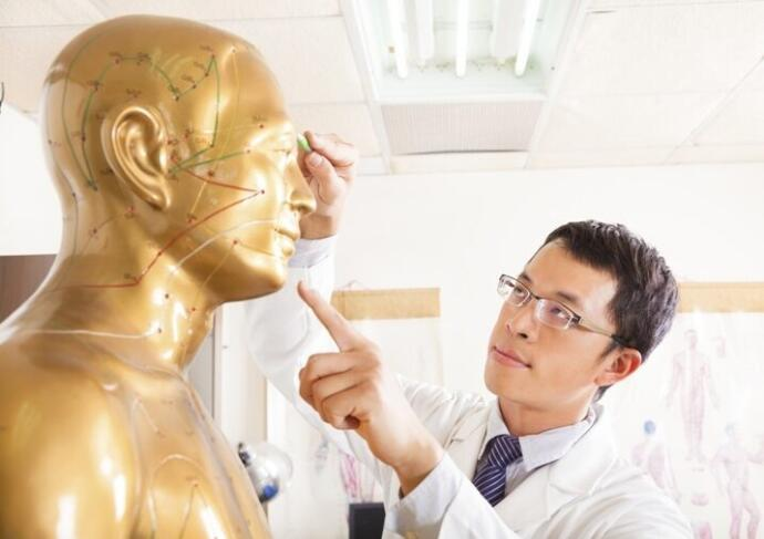 Doctor Pointing At Acupoints On Human Model