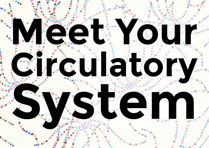 Circulatory System Header