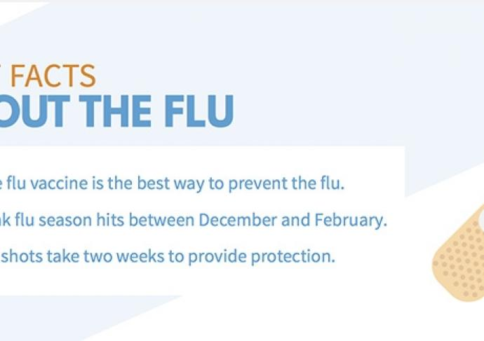 Flu Infographic 2016 Cropped 2
