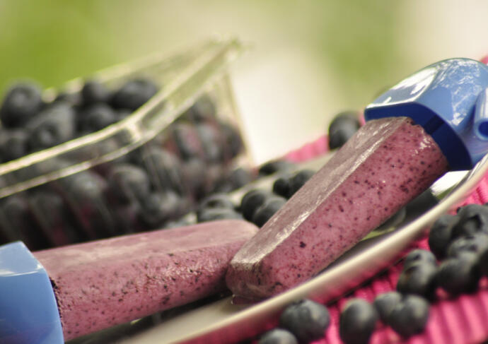 Greek Yogurt Blueberry Popsicles