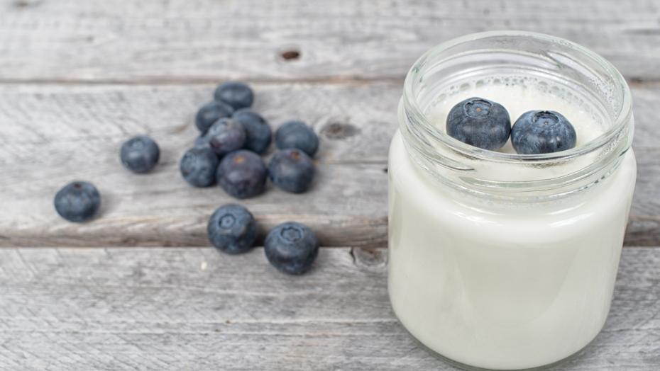 1 25 18  Probiotics Yogurt