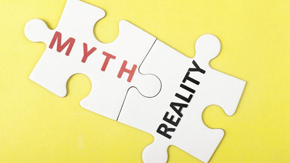 453103929 Myths Vs Realities