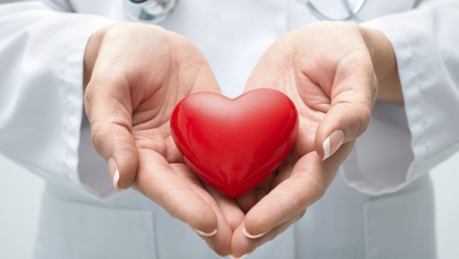 454983761 Doctor Holding Heart