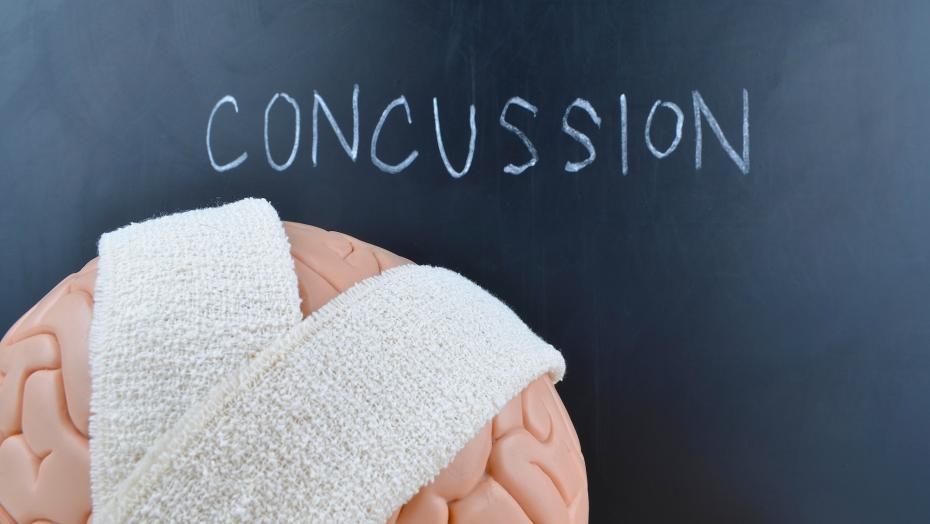 504242407 Concussion Brain
