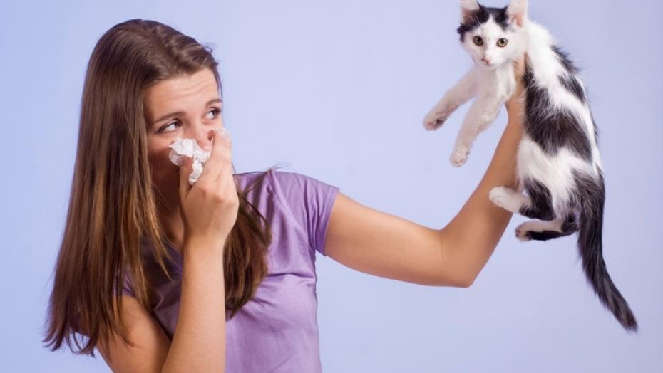 Thinkstockphotos 177006997 Woman Allergic To Cat