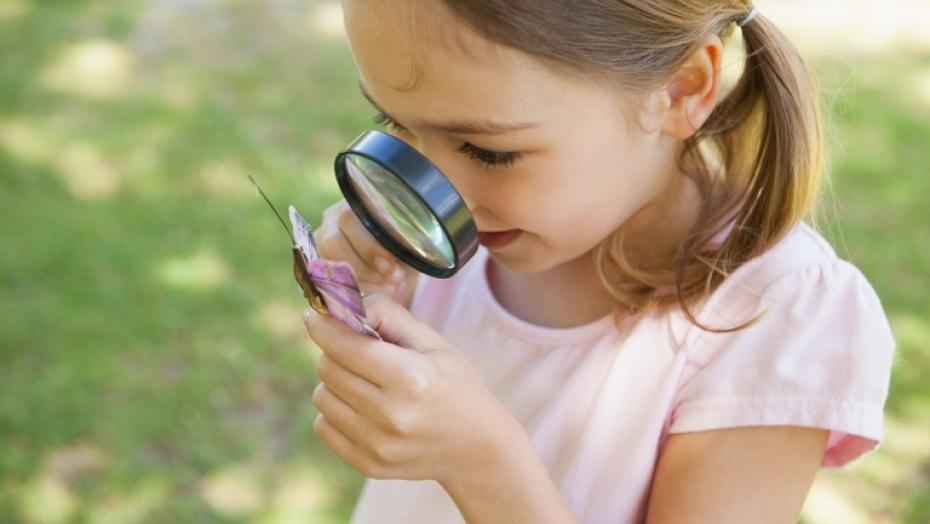 Thinkstockphotos 494378295 Girl Examining Butterfly