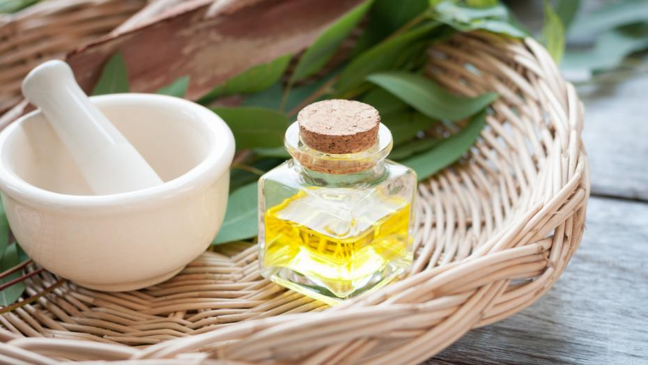 Thinkstockphotos 514370200 Eucalyptus Oil