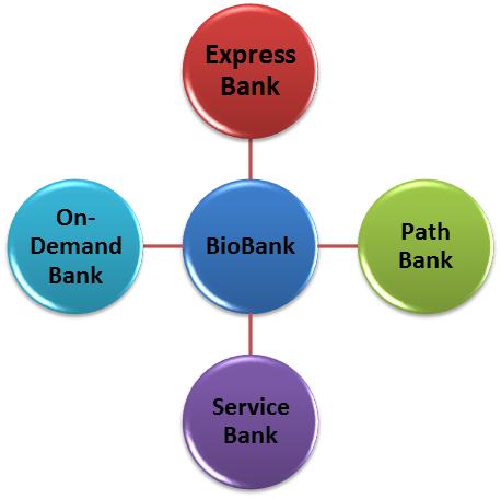 Infographic showing how BioBank links the other service lines